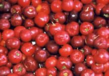 natürliche Vitamine in Früchten